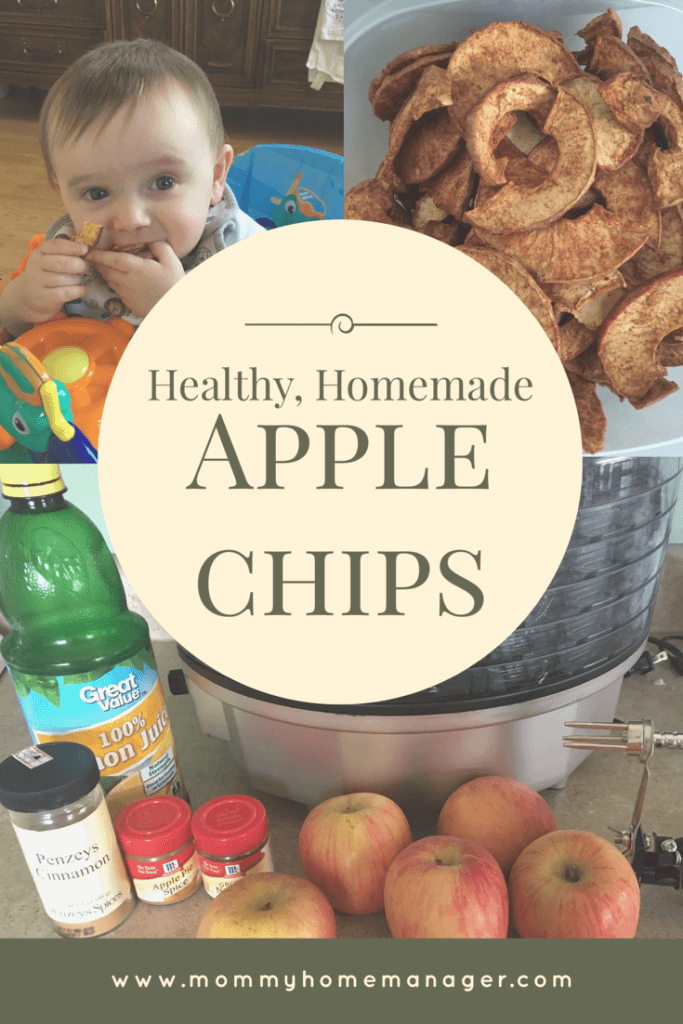 Healthy Homemade Apple Chips are a delicious and easy treat to make in your dehydrator.
