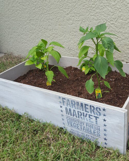 This is such an adorable upcycled DIY backyard project for your garden.