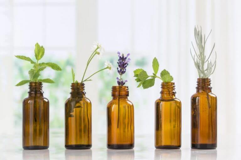 In recent years, many more people have turned to natural remedies over conventional medicine and its applications. People are turning to alternative forms of medicine for minor to moderate illnesses and health issues.