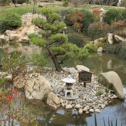 Shinzen Japanese Garden, Fresno